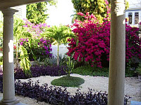Garden at Renovated Colonial near Paseo Montejo | image